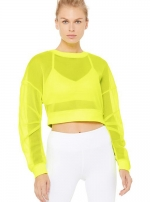 Топ Row Long Sleeve Highlighter
